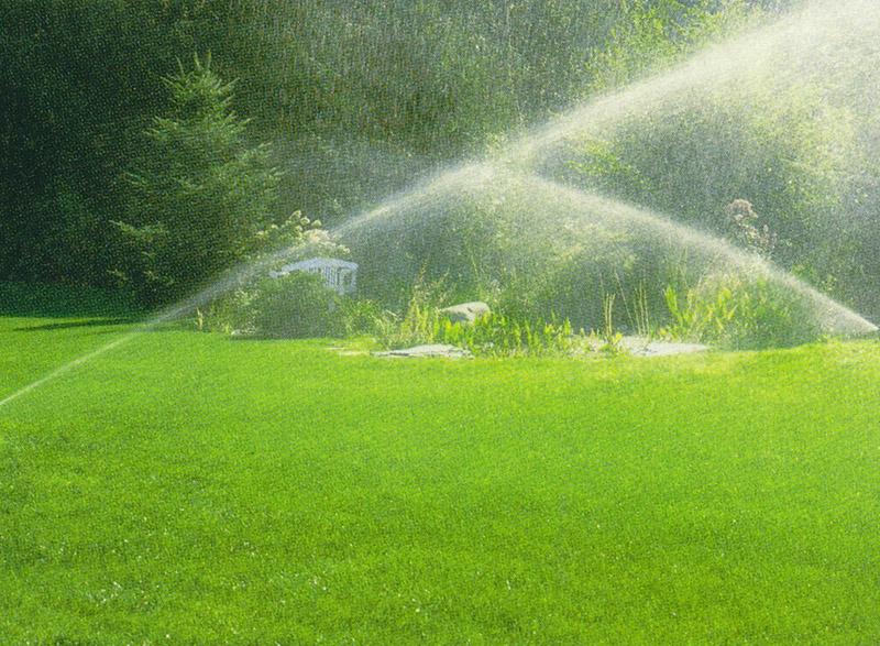 Lawn care Services2